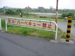 2006062405